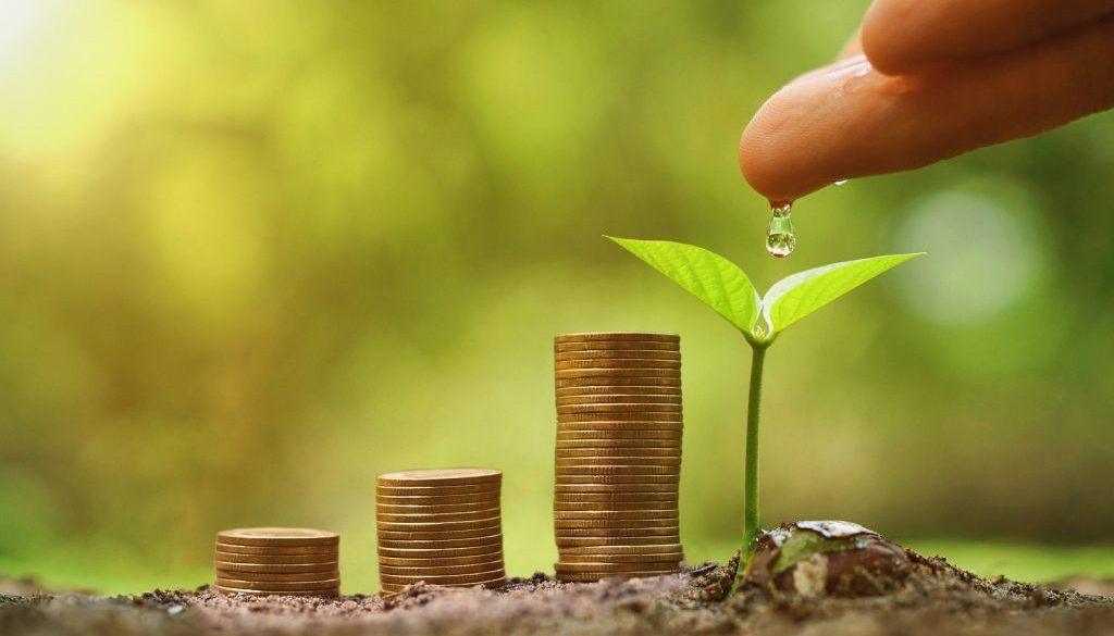 Green business and investment / Business with environmental concern